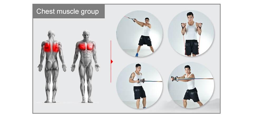exercice elastiband pour la poitrine - ULTIME™ WORKOUT SET-Elastiband